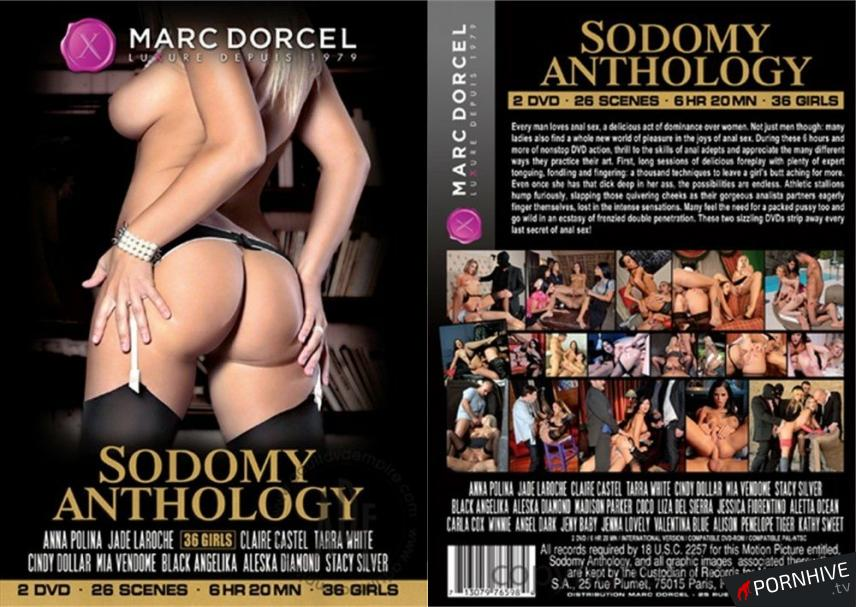 Sodomy Anthology Movie Poster - Click to watch.