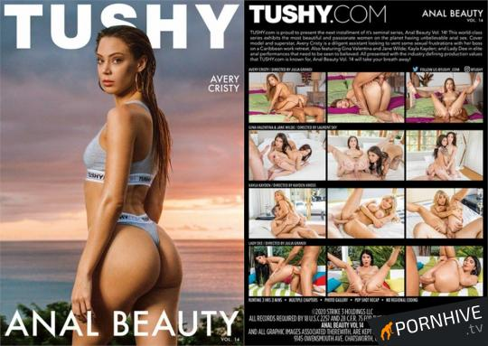 Anal Beauty 14 Movie Poster - Click to watch.