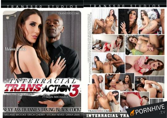 Interracial Trans Action 3: Sean Michaels Movie Poster - Click to watch.
