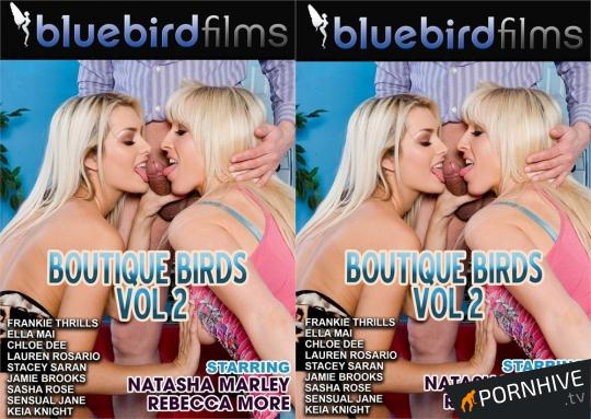Boutique Birds 2 Movie Poster - Click to watch.